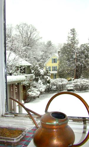 March 2008 Snowfall